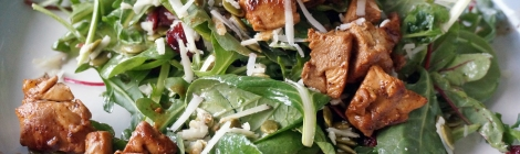 Salad greens mounded on a plate, interspersed with dark-red cranberries, olive-green pepitas, and bright white shreds of manchego cheese. Chunks of juicy brown chicken lay on top; some have tumbled down to the side.